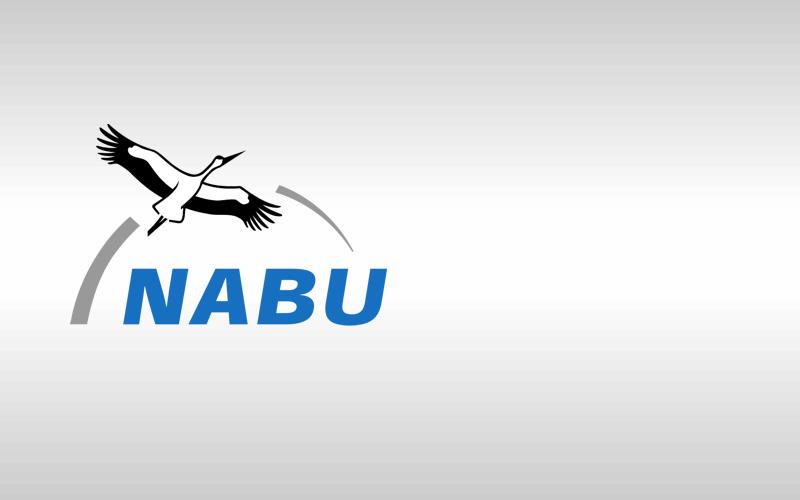 Vogelkundliche Wanderung in Müden abgesagt