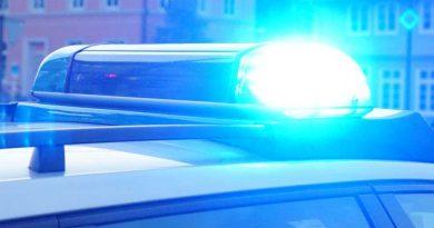 Polizei sucht flüchtigen LKW nach Baumunfall