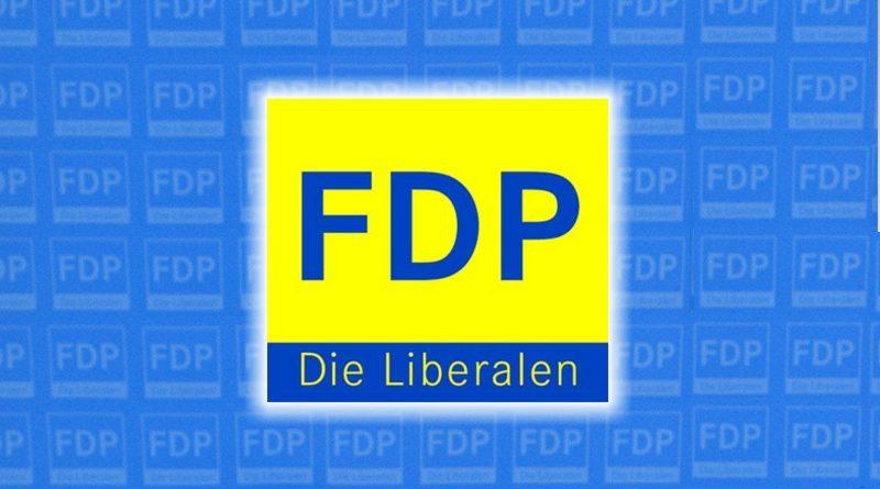 """FDP: """"Gut Ding will Weile haben"""""""