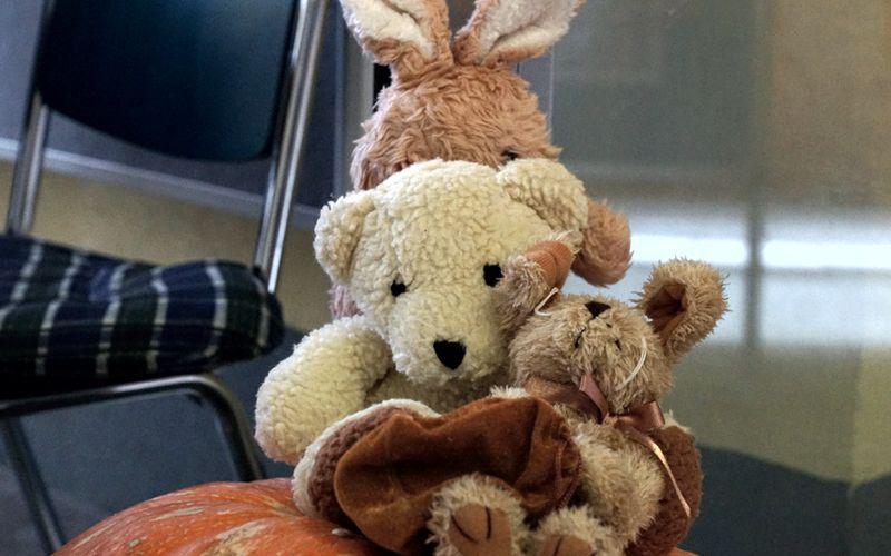 Herbstfest in der Celler Bahnhofsmission war ein großer Erfolg