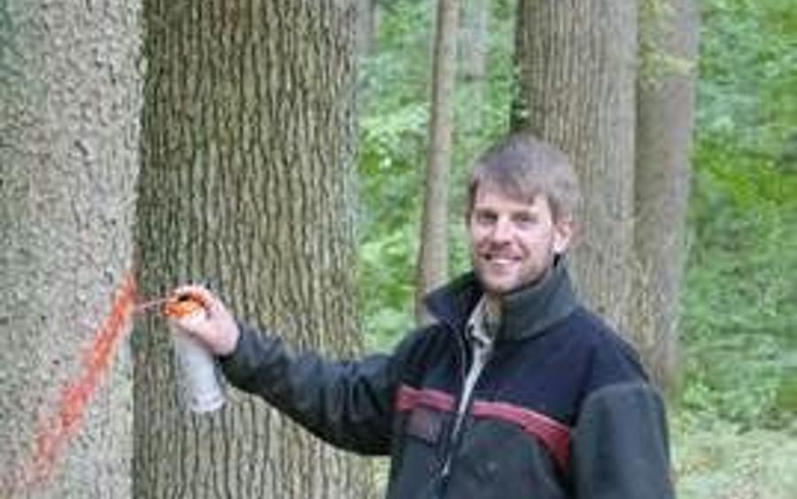 Neuer Förster in Unterlüß: Frederic Schirmer ist neuer Revierleiter der Försterei Behren