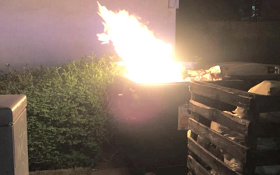 Wald- und Mülltonnenbrand!
