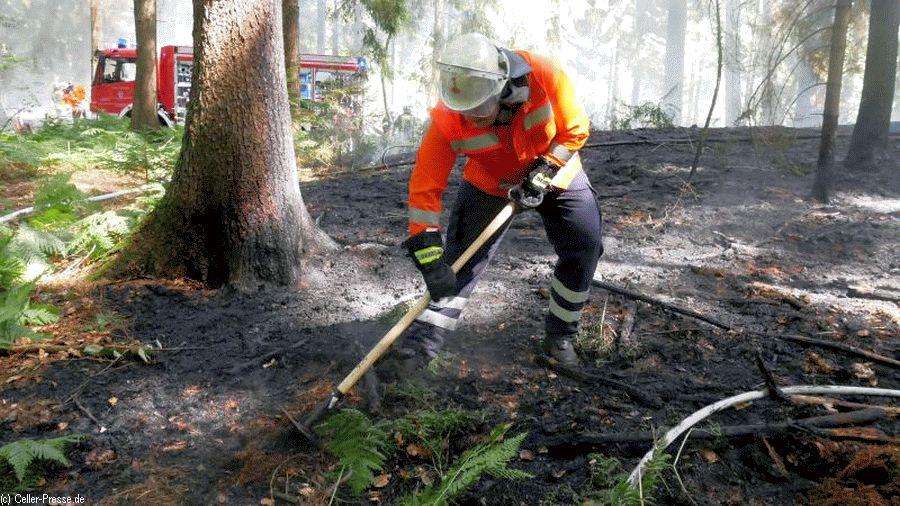 Drei Vegetationsbrände am Montag – 2.500 m² Unterholz brennen bei Lachtehausen ***Aktualisiert***