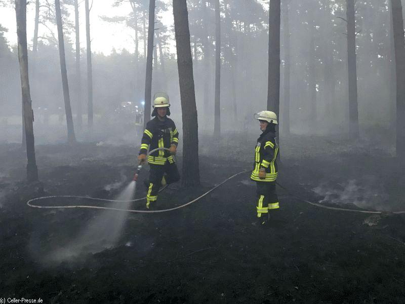 """Vegetationsbrand im Bereich """"Schwarzer Weg"""" in Oldau"""