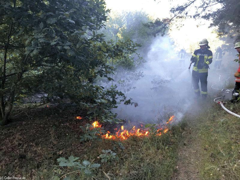 Wieder Waldbrand in der Gemeinde Hambühren