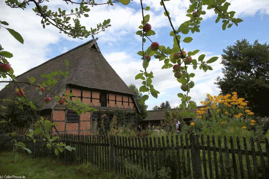 Ein einstelliger Heidehof durch die Jahrhunderte – Themenführung zur Geschichte des Brümmerhofes