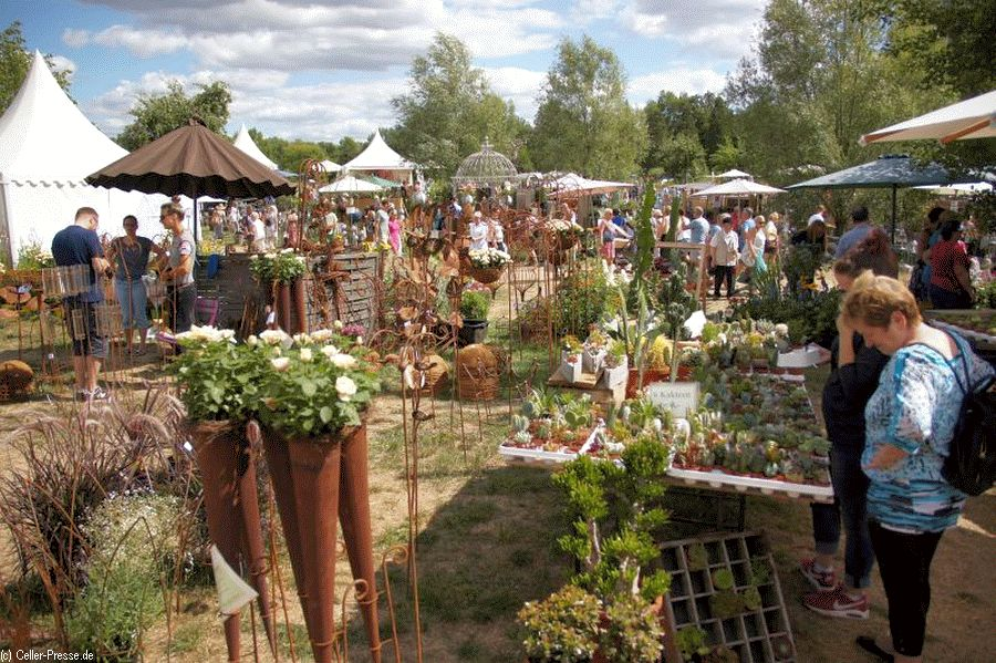 Gourmet & Garden auf dem Landgut Wienhausen zog Tausende Besucher an