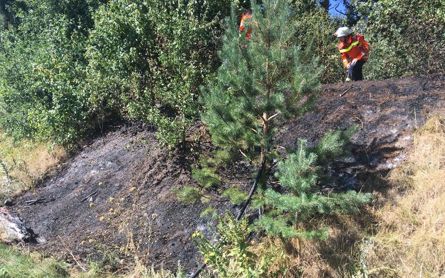 Kleinere Vegetationsbrände am Montag!