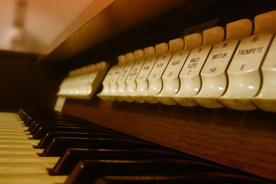 Orgelentdeckertag für Jung und Alt in Nienhagen