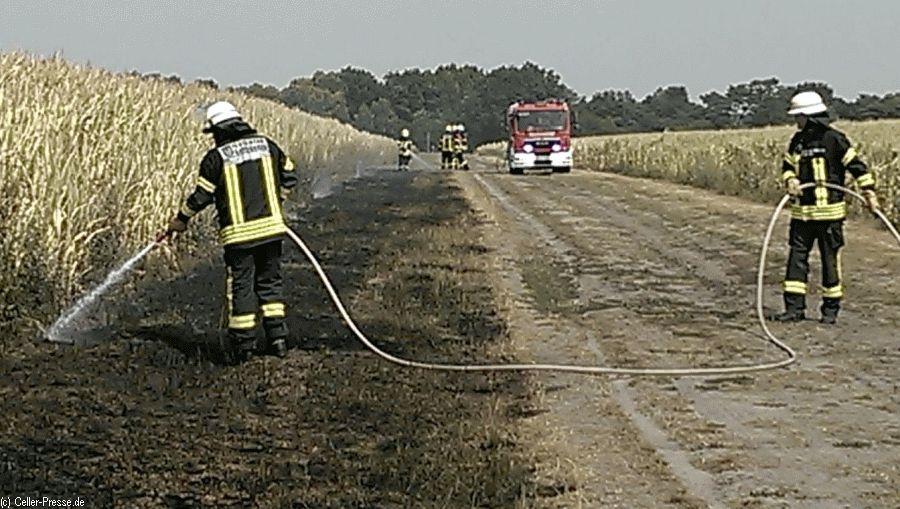 Vegetationsbrand im Bereich Heidlandsweg