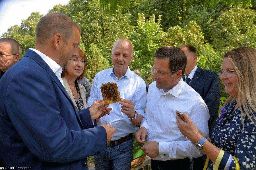 CDU-Staatssekretär ging mit Bienen auf Tuchfühlung