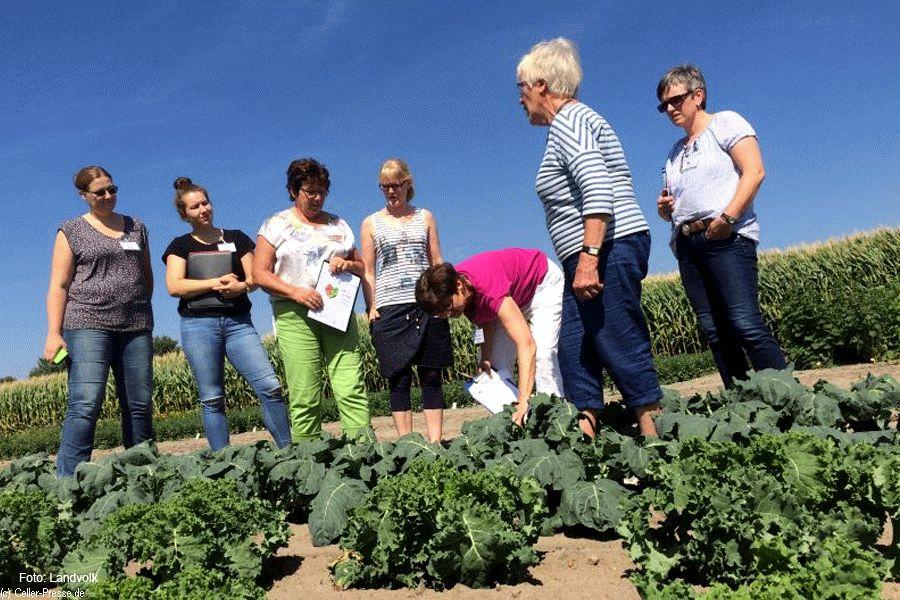 Kenntnisse über Landwirtschaft und Ernährung