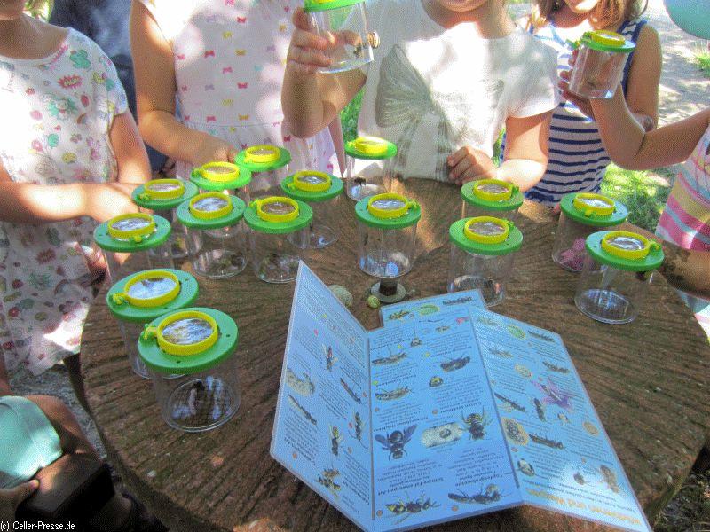 Kids on Tour – mit den Becherlupen aus dem Bienenkoffer im Sinnesgarten unterwegs