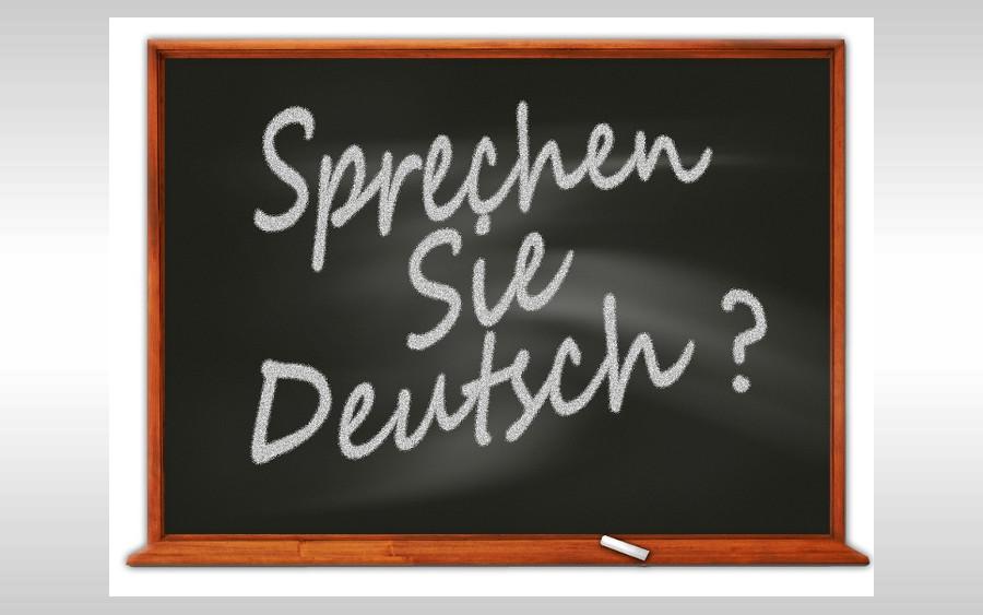 Fast ein Drittel aller künftigen Erstklässler in Celle kann kein oder nur unzureichend Deutsch – AfD fordert Maßnahmen zur Verbesserung der Situation