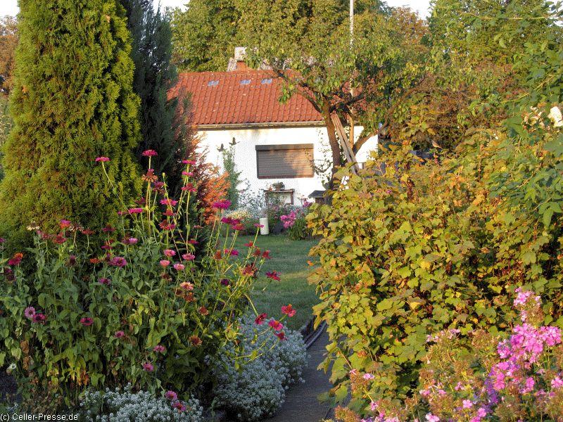 Naturnaher Stadtgarten in Celle/NABU lädt zum Mitgärtnern ein