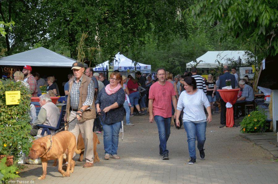 Besucheransturm beim Sommerfest des Celler Tierheims