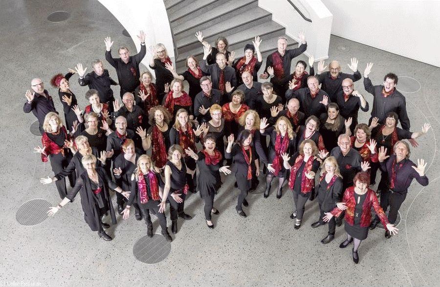 """""""Choir under Fire"""" mit Pop, Jazz & Swing – Konzert in der Celler Kreuzkirche"""