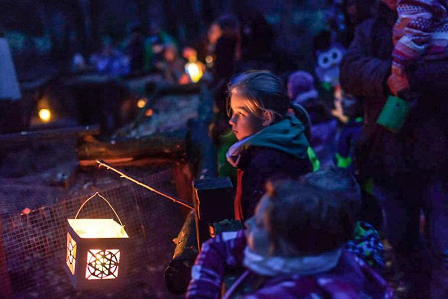 Lichterfest im Wildpark Müden am 17. November 2018