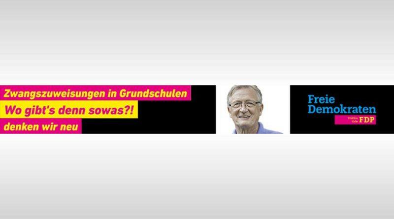 """Haushalt 2019:  Falkenhagen (FDP) kritisiert SPD, Grüne und AfD: """"Das ist kein verantwortungsvolles Haushalten"""""""