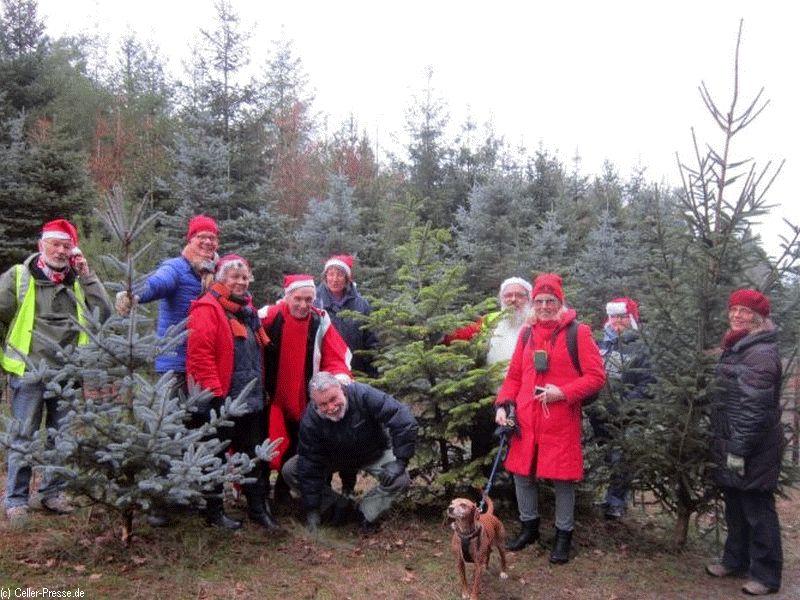 Künstler, Gewerkschafter, Journalisten schlagen Weihnachtsbäume