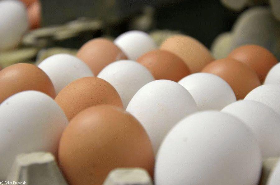 Ein Ei gleicht eben nicht dem anderen …