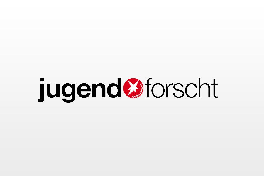 """SVO präsentiert Regionalwettbewerb """"Jugend forscht"""" in Celle"""