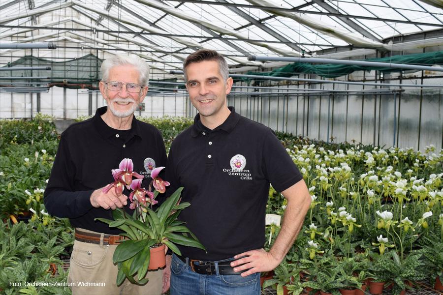 """Orchideen-Exoten zu den """"Tagen der offenen Tür"""" in voller Pracht"""