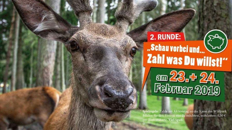 """""""Zahl was Du willst"""" – Aktion im Wildpark Müden"""