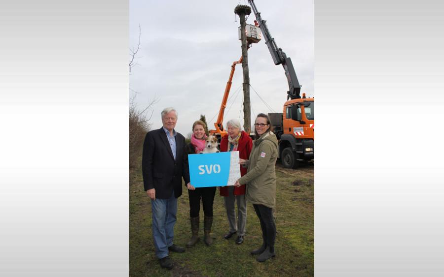 Celle-Uelzen Netz errichtet neuen Storchennistplatz in Eversen