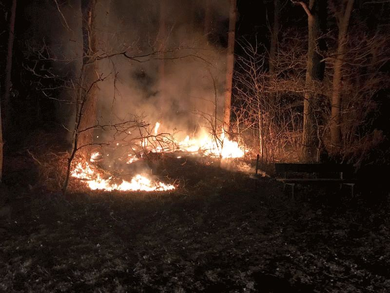 Feuerwehr verhindert Waldbrand