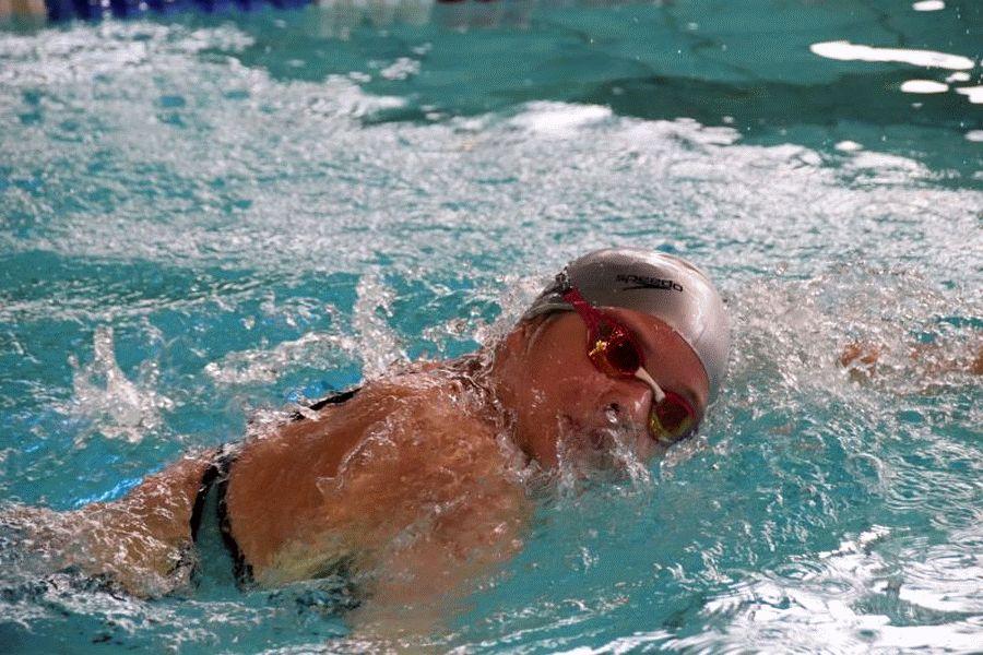 Schwimmen: Landesliga der Vereinsmannschaften in Hildesheim (DMS) Herren des Celler Schwimm-Club und Damen des SV Nienhagen schaffen Klassenerhalt