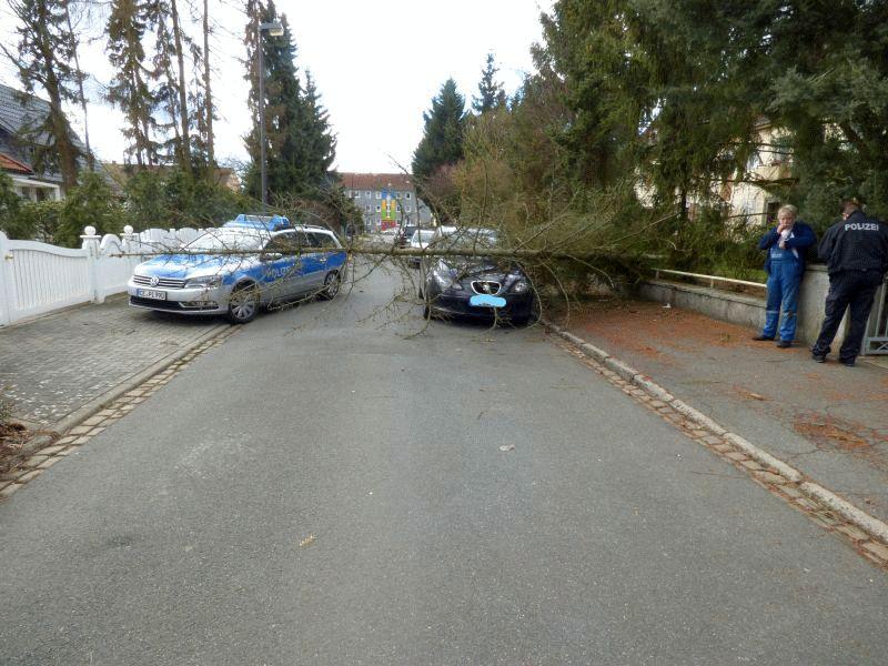 Baum stürzt bei Sturm auf parkendes Auto