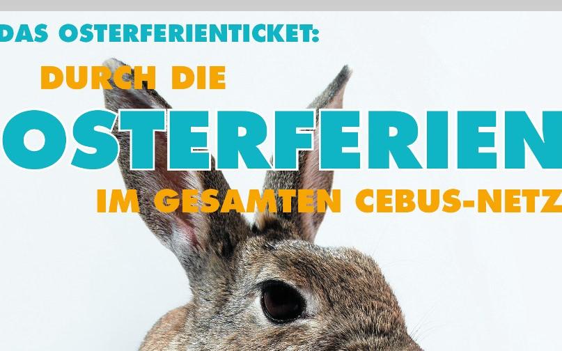 Das CeBus Osterferienticket für Schüler – Für 7,50 Euro freie Fahrt im gesamten CeBus-Netz
