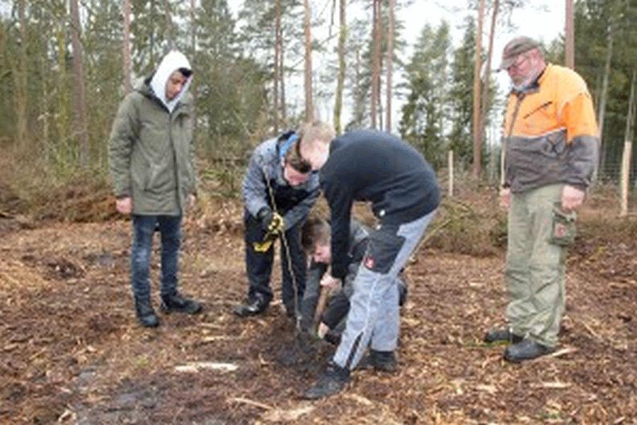 Pflanzaktion zum Tag der Wälder im Forstamt Unterlüß – Oberschüler legen Grundstein für ein Arboretum am Haus Siedenholz
