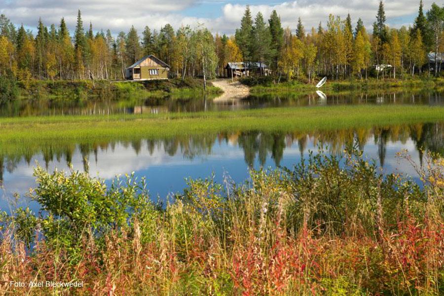 Ruska Aika – Herbst in Lappland
