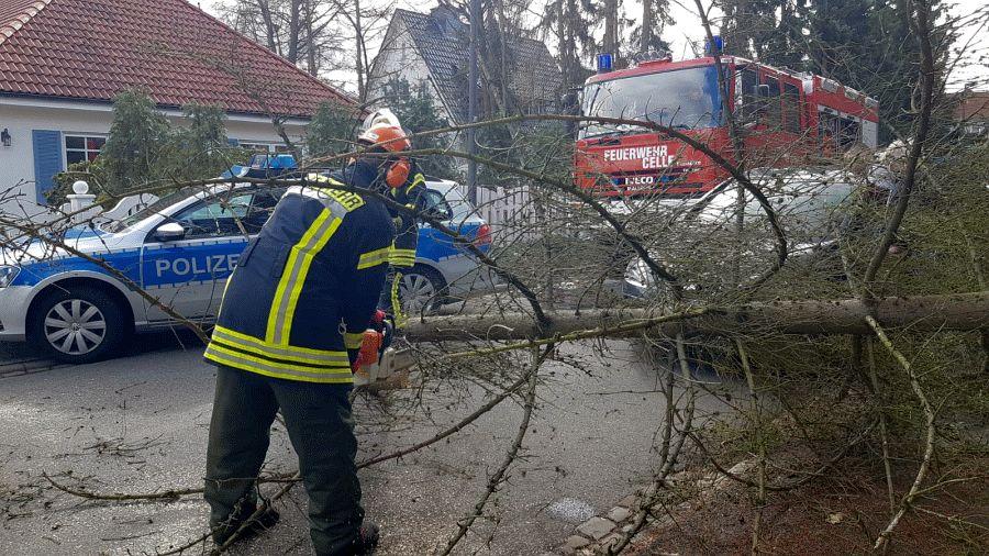 Windiger Vormittag – bisher zwei Einsätze für Feuerwehr Celle!