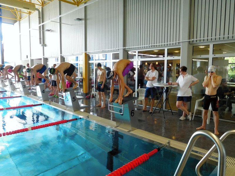 CSC-Schwimmer in Wunstorf erfolgreich