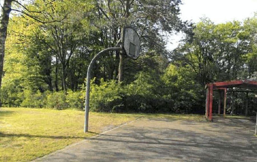 Diebstahl eines Basketballkorbes