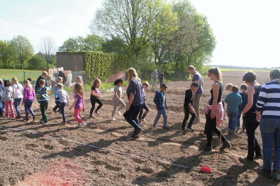 Gemüseackerdemie startet mit Anbau