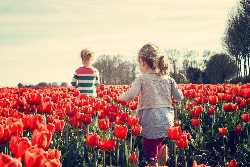 Eltern in der Gemeinde Südheide haben die Wahl: Krippe oder Tagespflege
