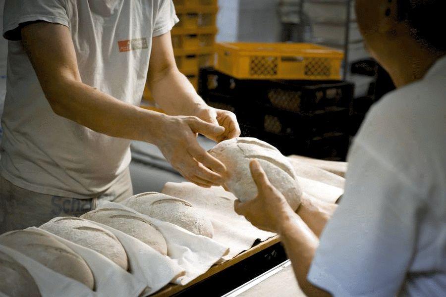 Bis zu 650 Euro mehr für Bäcker-Azubis im Kreis Celle