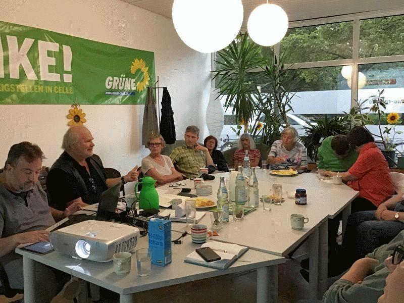 Grüne diskutieren aktuelle Celler Schullandschaft