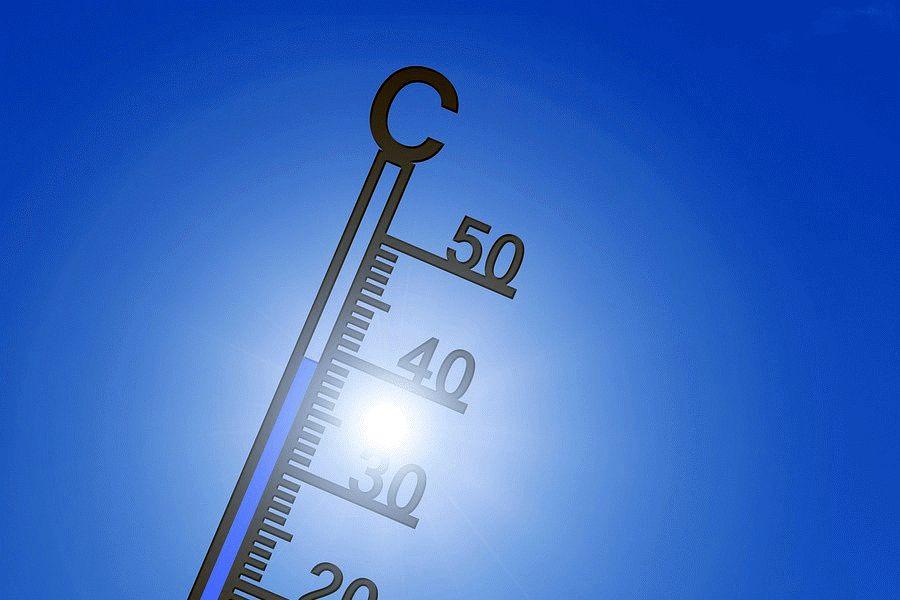 Schutz bei der Sommerhitze – Gesundheitsministerium und Landesgesundheitsamt informieren