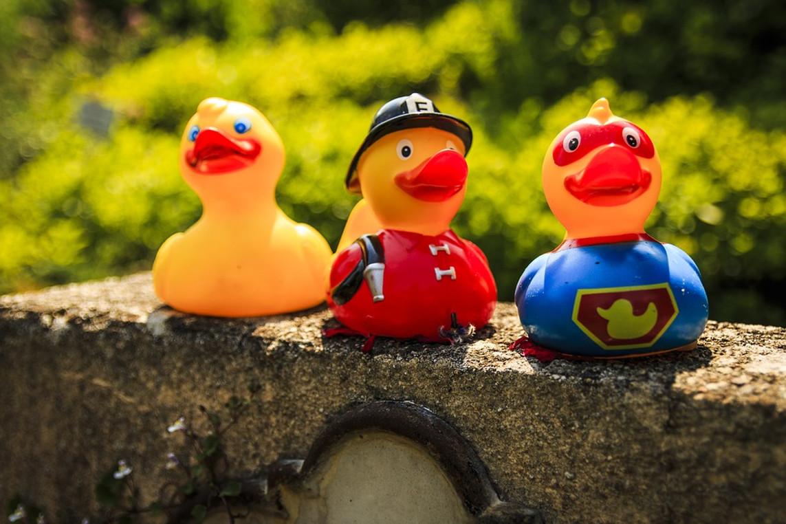Celler Entenrennen: Enten jetzt auch per Post erhältlich