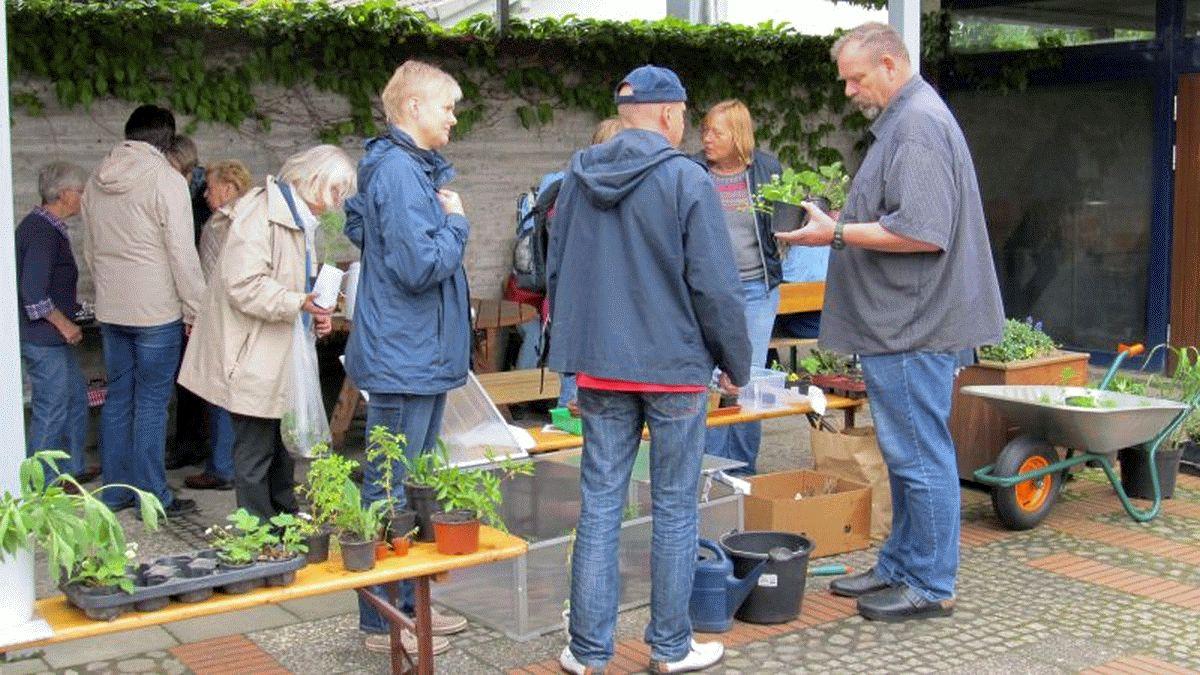 Ernte- und Pflanzenflohmarkt in der Kreuzkirche in Celle – Obst, Gemüse, Saat, Pflanzen, Kaffee & Kuchen geben & nehmen