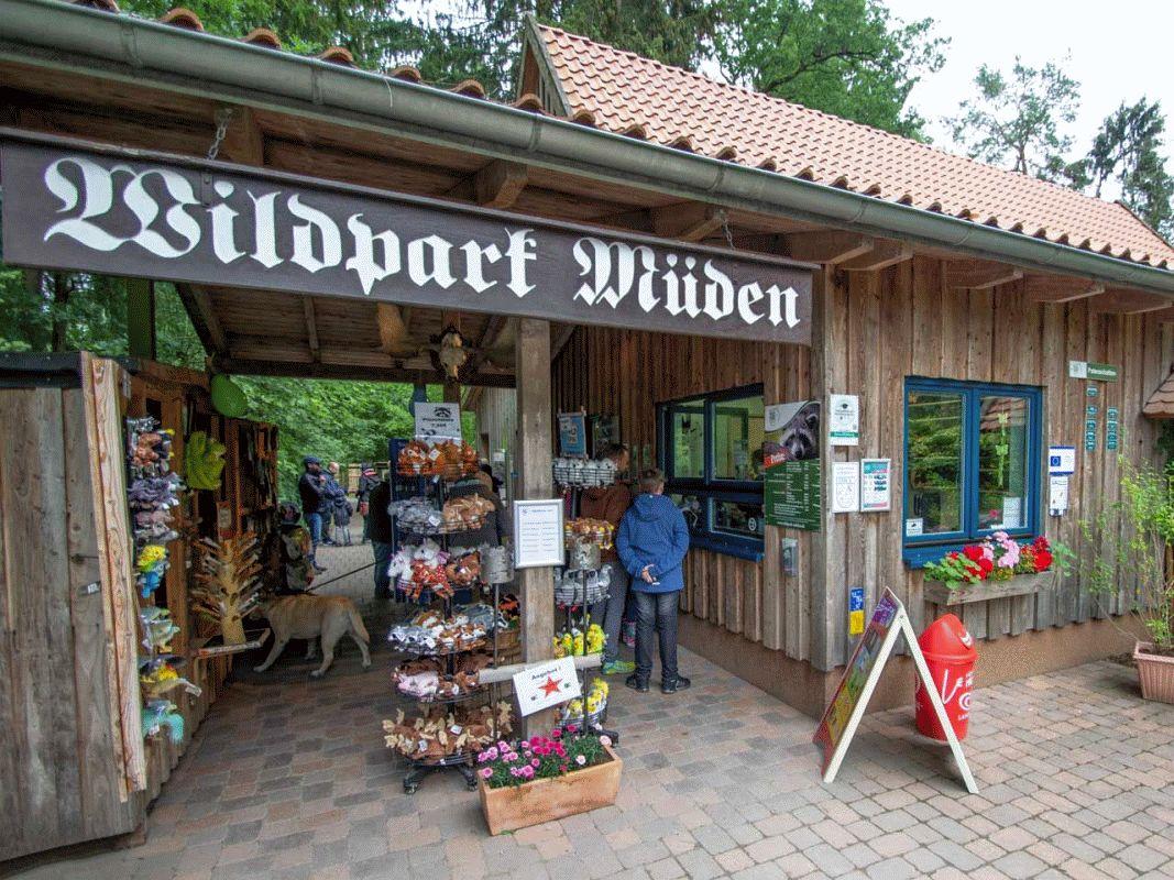"""""""Zahl was Du willst!"""" – Aktion im Wildpark Müden"""