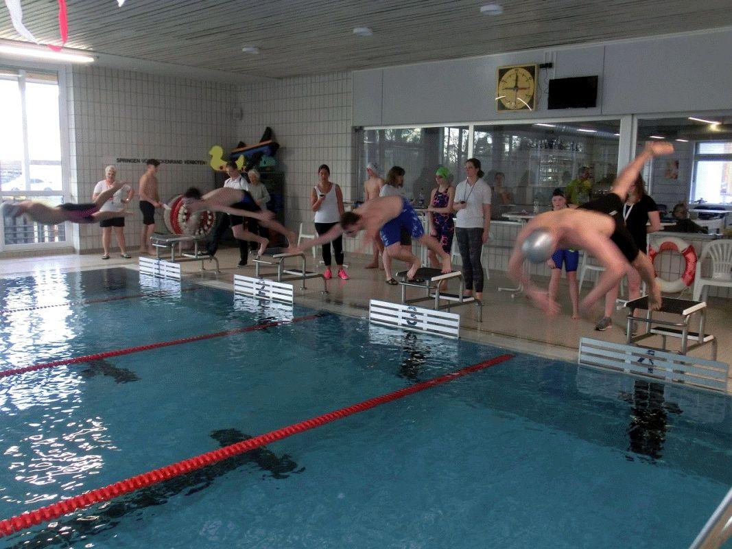 Deutscher Mannschaftswettbewerb Schwimmen – SG Celler Land im Bezirksmittelfeld