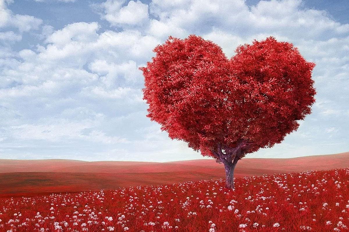 Einfach. Die Liebe. Feiern: Valentinstagsgottesdienst in Nienhagen
