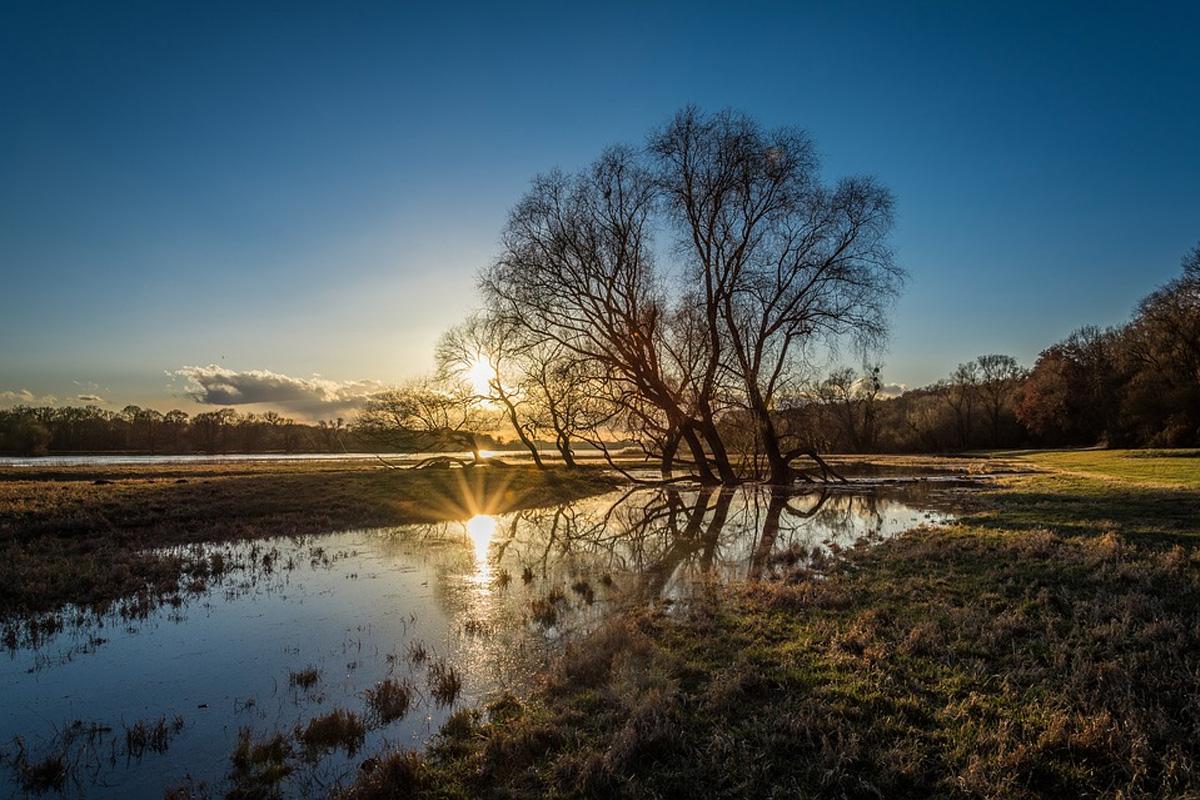 Flusslandschaft Elbe setzt auf Qualität
