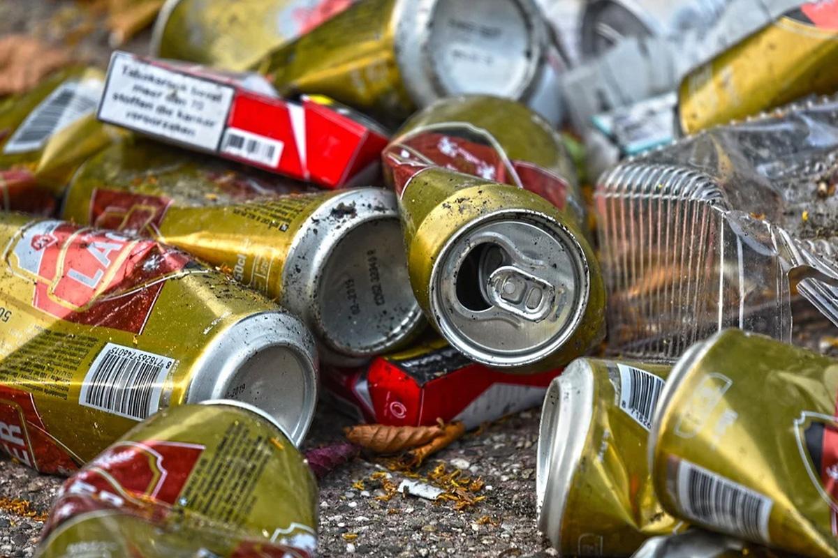 WG/DiePartei-Fraktion setzt sich für eine Müllmelde-App ein